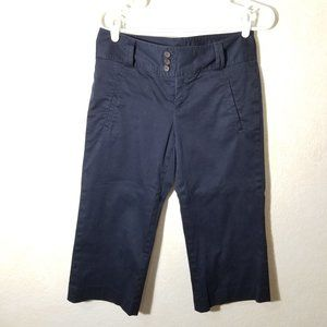 Banana Republic Navy Bermuda Shorts shorts 4 Long